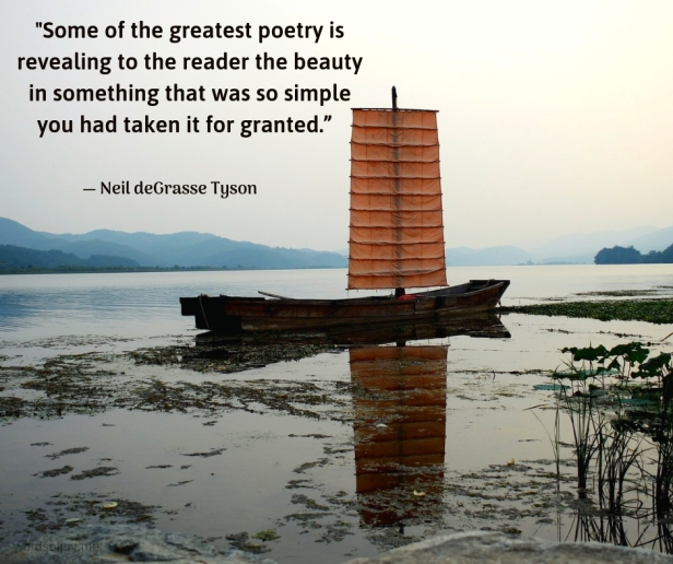 simplicity - boat on a beach - Some of the greatest poetry quote by Neil deGrasse Tyson @wordsofjoy.me