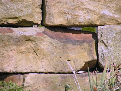 wall - brick - gap - in-between