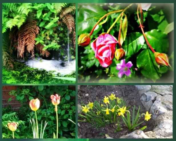 collage of photos (C)joylenton @wordsofjoy.me