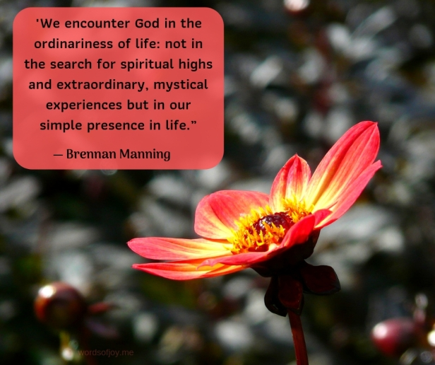 simplicity - orange dahlia flower opening - We encounter God in the ordinariness of life quote by Brennan Manning @wordsofjoy.me