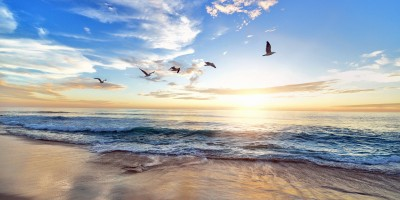 place - soul benefits of listening to God in prayer - beach - seagulls @wordsofjoy.me