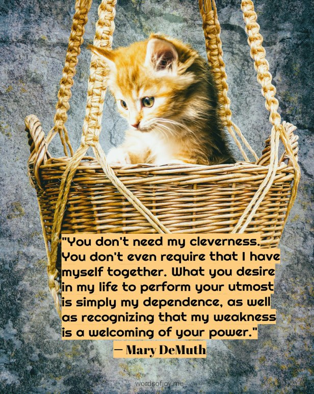 simplicity - kitten in a basket - dependence quote by Mary DeMuth @wordsofjoy.me