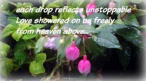 rain-on-flowers-listen-woj