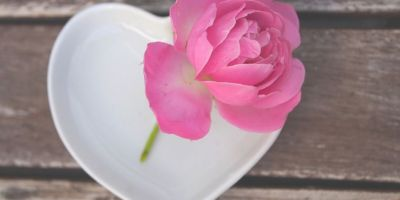 simplicity - getting back to basics @joylenton.com - rose - heart