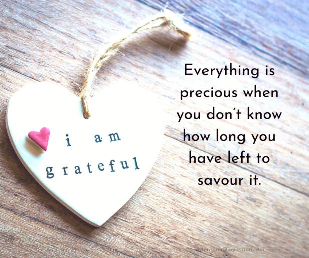 precious - I am grateful heart - Everything is precious quote (C) joylenton @joylenton.com