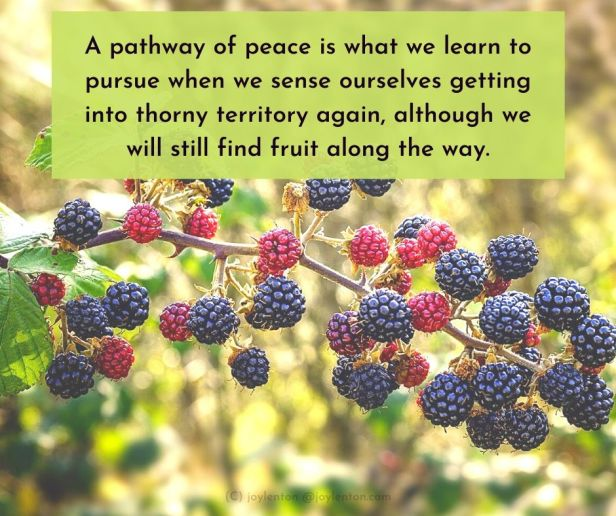 lake - Pursuing a pathway of peace quote (C) joylenton @joylenton.com