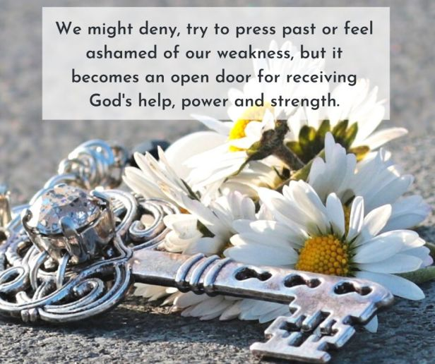 weakness - fallen daisies - key - We might deny, try to press past or feel ashamed of our weakness quote (C) joylenton @joylenton.com