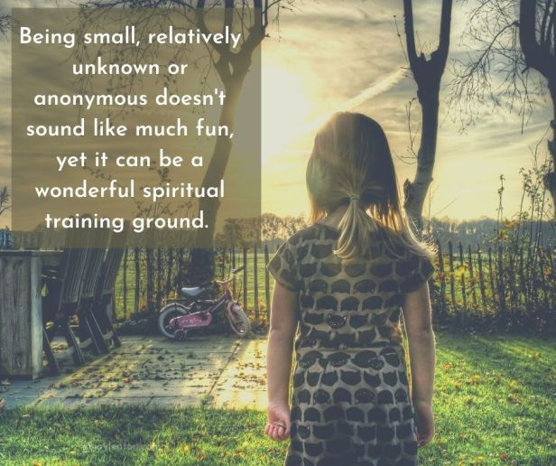 dreams - Being small, relatively unknown or anonymous doesn't sound like much fun, yet it can be a wonderful spiritual training ground quote (C) joylenton @joylenton.com