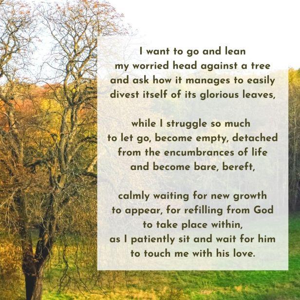 release - autumnal trees -  empty poem excerpt (C) joylenton @joylenton.com