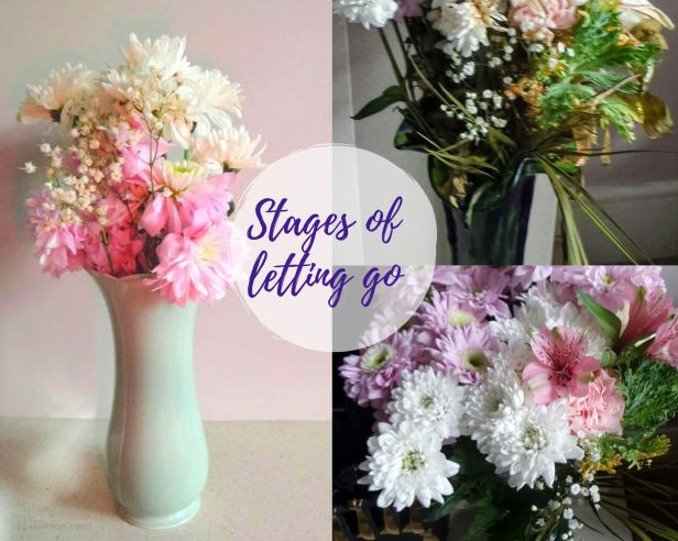 release - flowers in process of dying - stages of letting go - (C) joylenton @joylenton.com