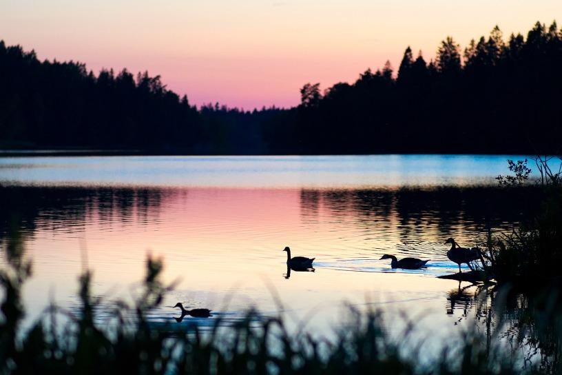 slow - sunset over a lake - the holy gift of slow @joylenton.com - image by Arek Socha @pixabay.com